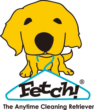 Fetchclean.com-Fetch Clean Automatic Laundry System Website